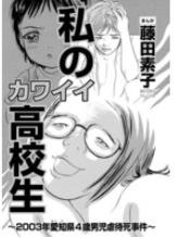 私のカワイイ高校生~2003年愛知県4歳男児虐待死事件~の1巻を無料試し読みするならこちら!